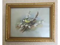 Great Tit Bird Print