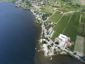 Orchard for sale in Osoyoos
