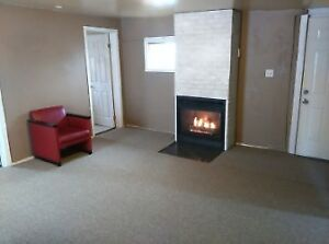 2nd floor one bedroom plus den with fireplace