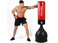 standup punch bag weights bench kettlebells sandbag etc