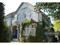 1 bedroom flat in Lower Edgeborough Road, Guildford, GU1 (1 bed)