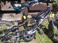 boys bike 16inch Raleigh
