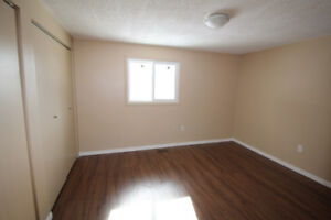Bright, Spacious, Renovated Townhome in Town of Alvinston