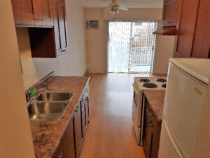 Still Available!! Bachelor apartment recent reno and new paint