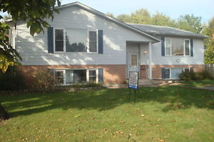 Separate entrance, parking, laundry in Western Hill!