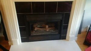 Propane Fireplace (non working)
