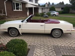 1983 Dodge Other Convertible