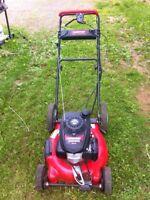 Need your lawn mowed? Kingston/greenwood-kentville
