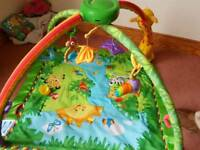 Fisherprice Rainforest Playmat