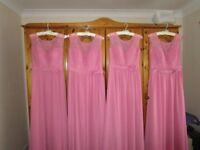 4 beautiful Alexia 208L bridesmaid dresses in 'Rose'.