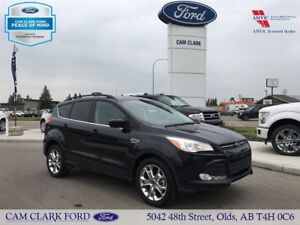 2015 Ford Escape Heated leather Seats, Back Up Cam