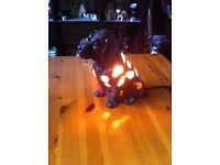 Unusual Spaniel Table Lamp