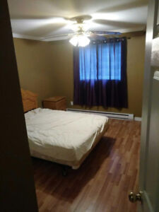 Beautiful bright furnished apartment close to seal cove campus