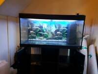 4ft 300litre juwel rio fish tank in excellent condition ( fish tank aquarium)