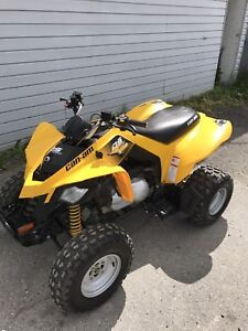Mint 2015 BRP DS250