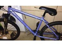 Carrera Bike in blue