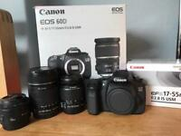 Canon 60D + EF-S 17-55mm f/2.8 IS USM + more lenses