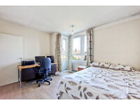 Large 2 bedroom flat with no lounge in SE1 Zone 1 available from the 1st of September.