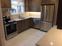 Custom Kitchen and Bathroom Updates and Renovations