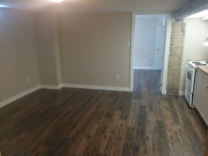 Bright renovated basement apt. on trent express route!