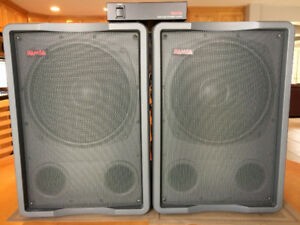 Bass Subs PA Performance Quality- Two subs & Subwoofer Processor