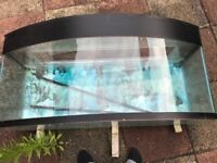 4 foot curved front Fish Tank