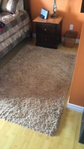 5 by 8 brown shag rug