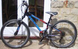 Trek MT220 Boys / Girls Mountain Bike.
