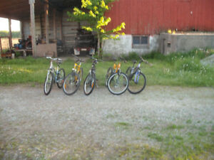 Adult Mountain Bikes For Sale