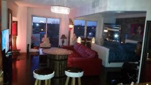 Très beau loft à aire ouvert sur Ile Paton à Laval - PETIT BIJOU