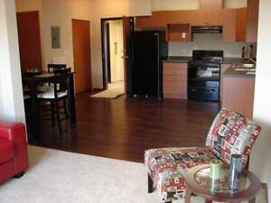 2 Bedroom Apt w/ Suite Laundry & A/C in South East Edm!~182
