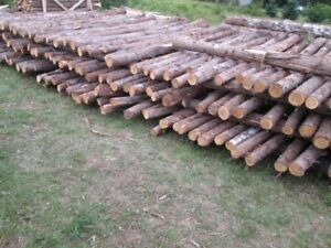 825-p/s-fence-cedar-post=8ft-the-prices-$3-to-$5-each