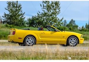2005 Ford Mustang GT Convertible with power to spare - NO GST