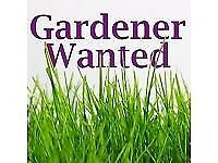 **Gardener wanted, must have own tools**