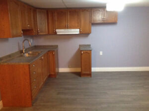 AMAZING RENOVATED 2 BEDROOM APARTMENT WITH BACKYARD