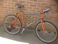 Retro Raleigh M.Trax Mountain Bike 21 sp