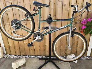 Lady Vintage Mountain Bike