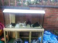 4ft long fish tank