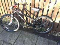 Boys Dawes Bullet 26 Bike in VGC