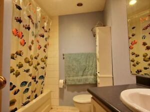 Immediate space available for 2 people in a shared condo