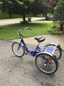 Vélo électrique 3 roues