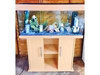 Juwel Fish Tank & Cabinet Aquarium Full Tropical Set Up