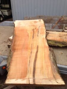 Live edge slabs for sale