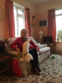 Full time live in Carer with Pet Therapy toy poodle