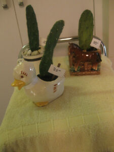 THREE GORGEOUS LITTLE WINDOW-SILL CACTI HOUSE PLANTS