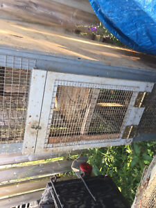 Two large rabbit cages