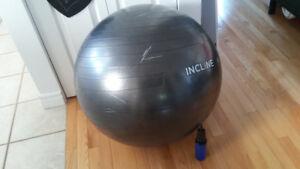 Boule exercice avec pompe - Black Exercise Ball with air pump