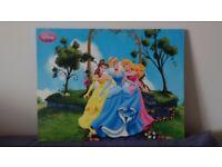 Disney princesses canvas