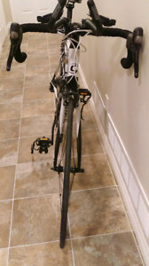 Cannondale Synapse 3 Carbon Ultegra Road Bicycle
