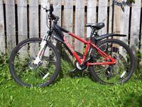 Boys Apollo Phaze mountain bike